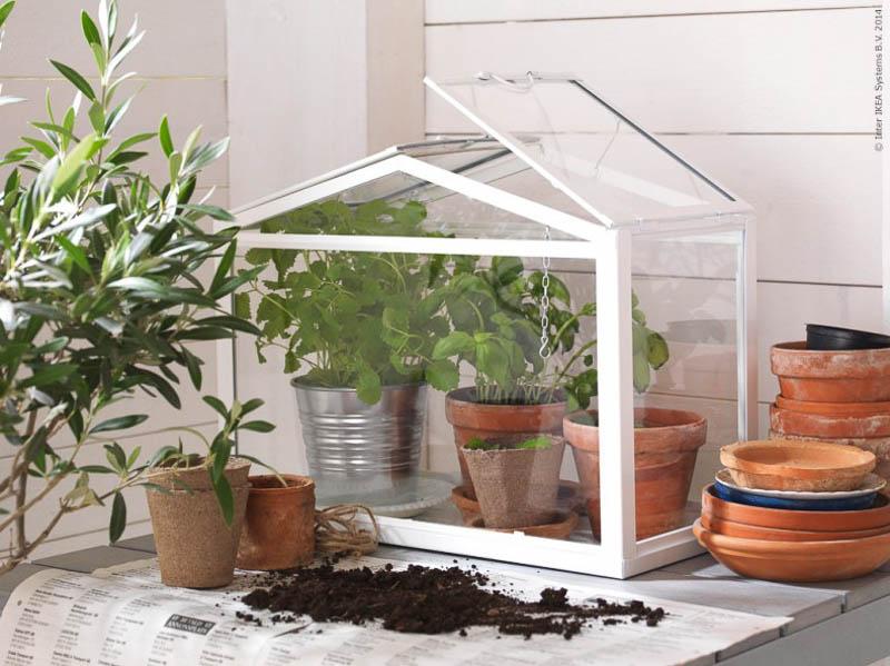 3_IKEA's mini-greenhouse