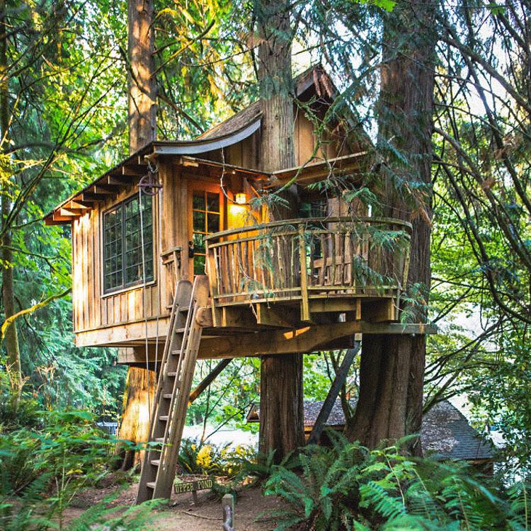 3_treehouse lifestyle