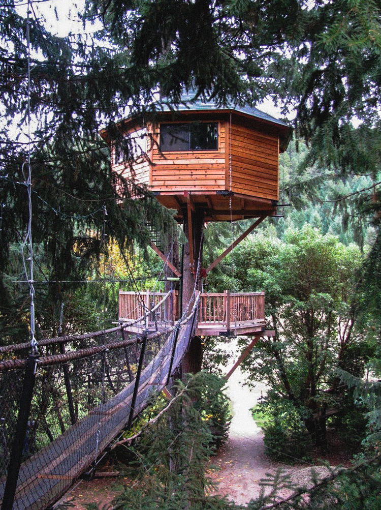 6_treehouse lifestyle