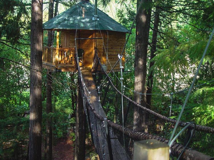 7_treehouse lifestyle