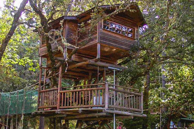 9_treehouse lifestyle