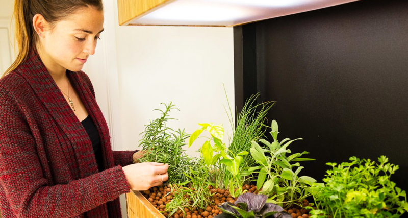 0_self-sustaining eco-garden Smart phone