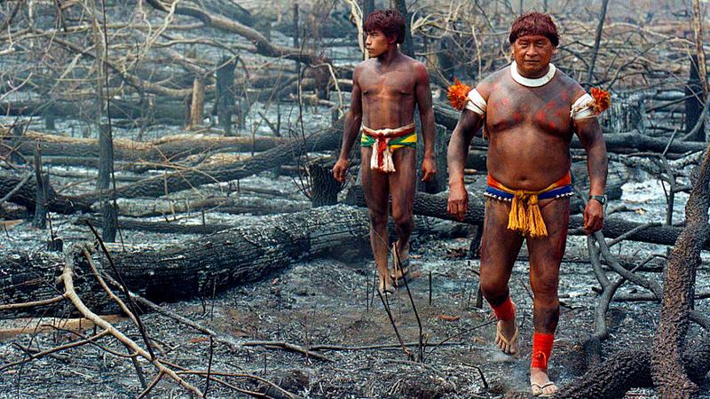 2_Peru is building a jungle conservation
