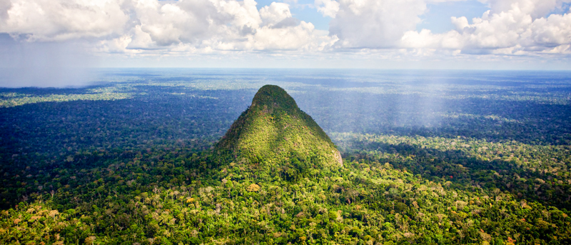 3_Peru is building a jungle conservation
