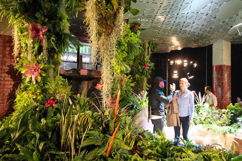 4_green subterranean oasis