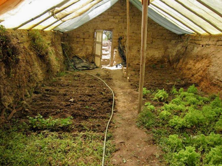 4_underground greenhouse