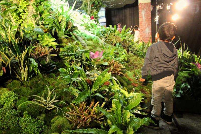 5_green subterranean oasis