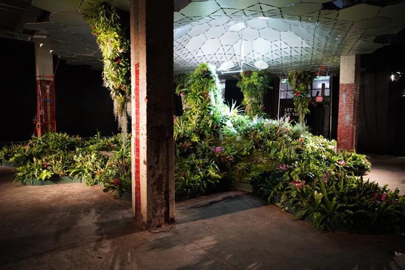 6_green subterranean oasis