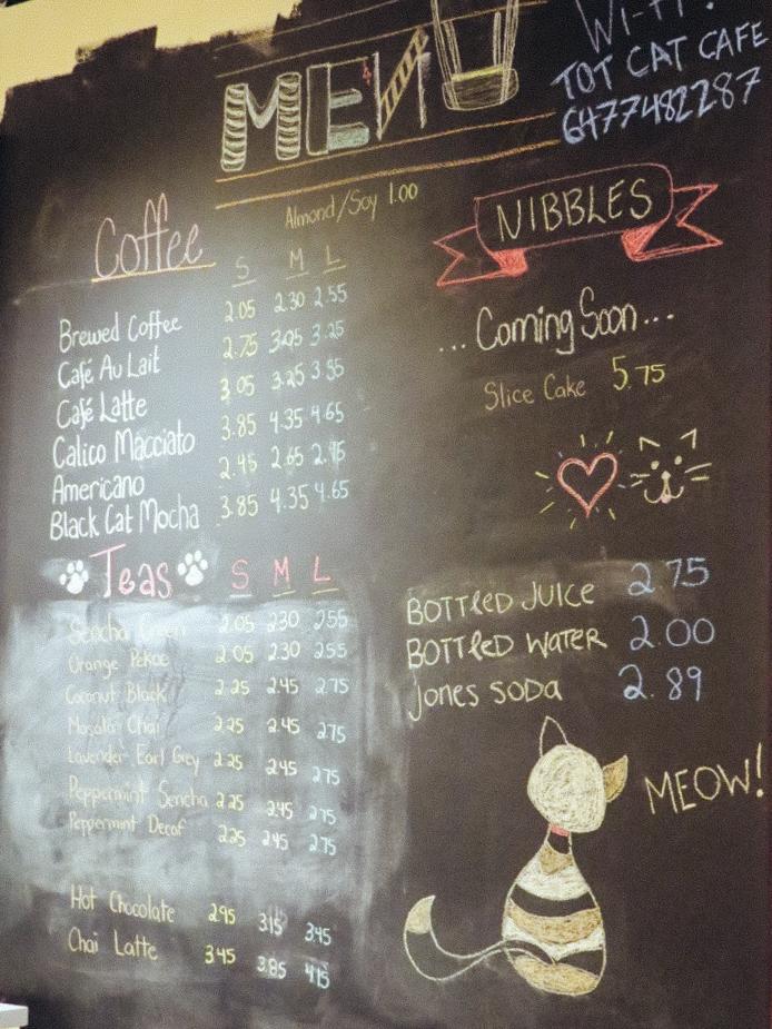 9_Cat Cafes