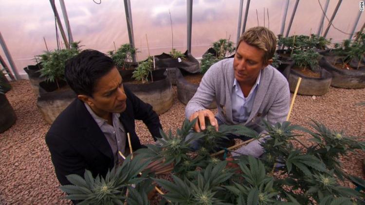 3_legalizing medical marijuana