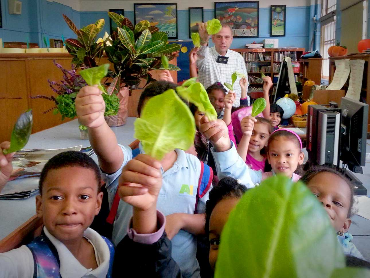 4_Edible Wall Bronx school