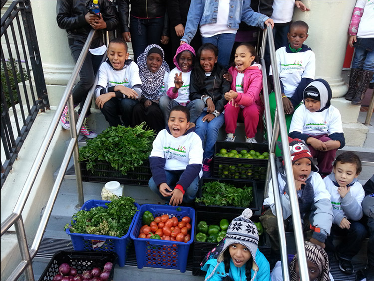 5_Edible Wall Bronx school