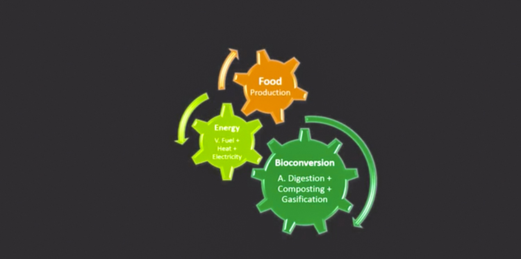 6_food waste to energy_