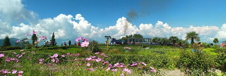 7_darjeeling railway (1 of 1)