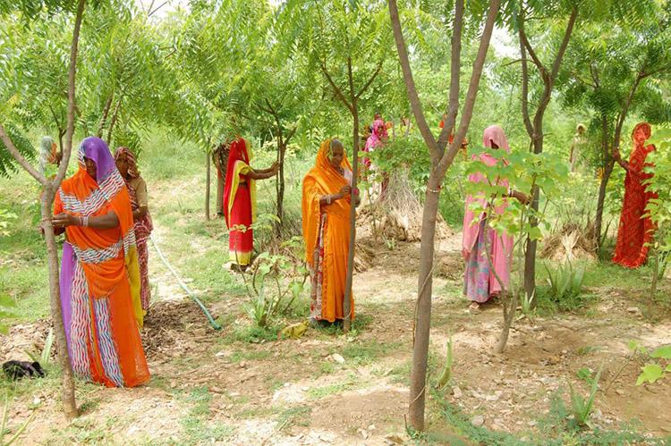 2_India celebrates female life
