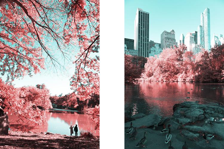 3_Central Park Infrared