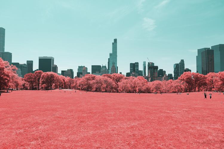 7_Central Park Infrared