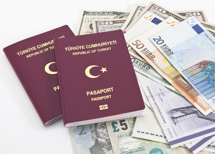 New passport with money