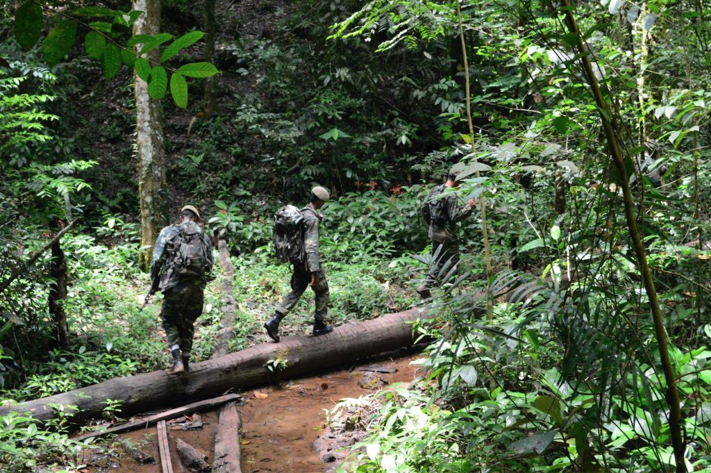 Members of the Suriname military patrolling Brownsberg for illegal gold mining, which is prominent in the area.
