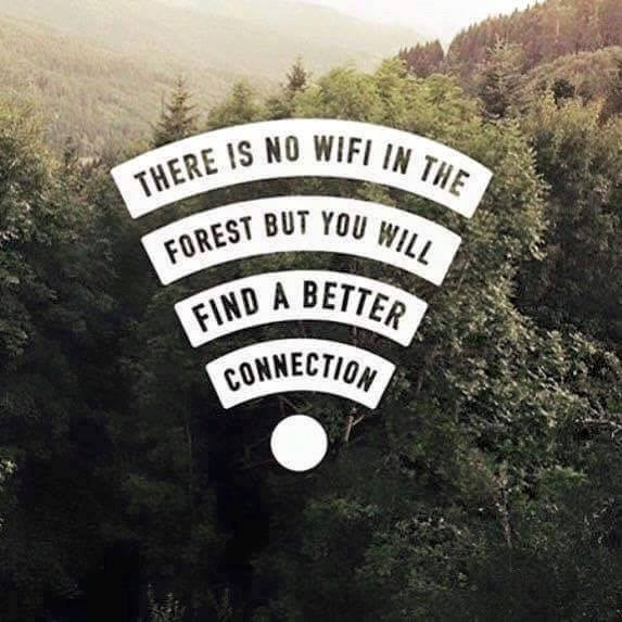 7_travel-quotes-that-you-need-in-your-life-right-now