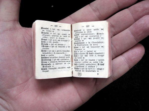 miniature_dnf_dictionary_055_ubt