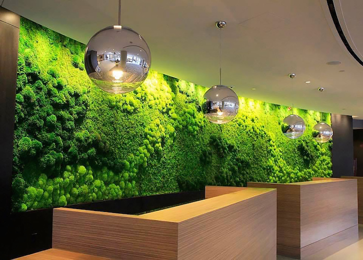 artisan-moss-cleveland-hilton-green-wall
