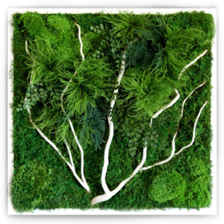 artisan-moss-white-branch-340x340_c