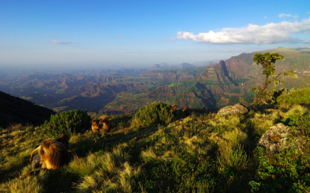 ethiopa