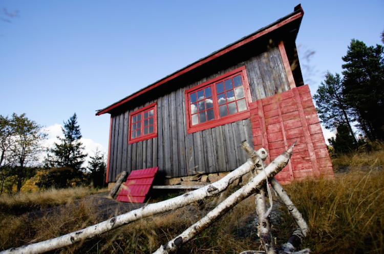 tiny cabins