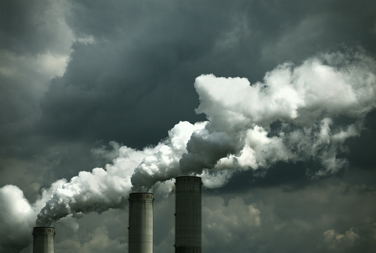 Global Pollution Deaths 1